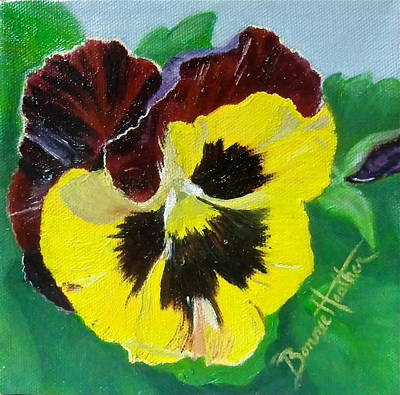 Pansy No. Ten Art Print by Bonnie Heather