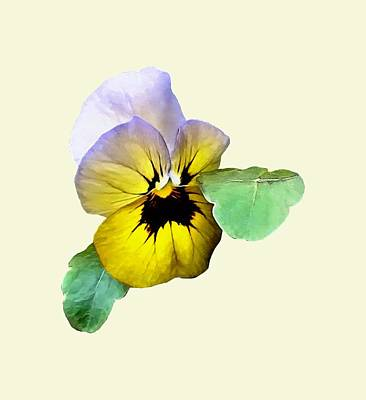 Photograph - Pansy Saluting by Susan Savad