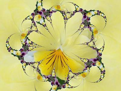 Digital Art - Pansy Swirls by Nancy Pauling