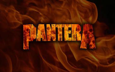 Pantera Art Print