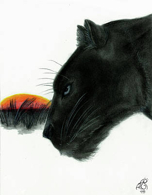 Panther At Dusk Print by Tiphanie Erickson