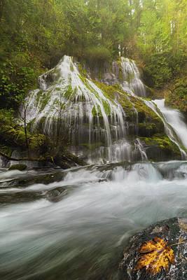 Photograph - Panther Creek Falls In Fall Season by David Gn