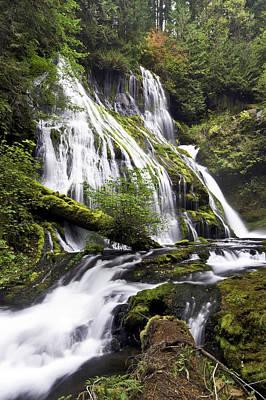 Photograph - Panther Creek Falls by Paul Riedinger