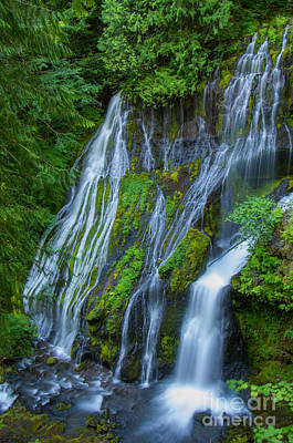 Panther Creek Falls Summer Waterfall 1 Art Print