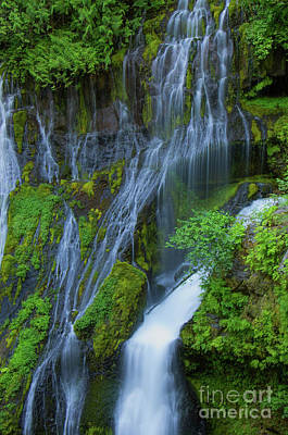 Photograph - Panther Creek Falls Summer Waterfall 2 by Rick Bures