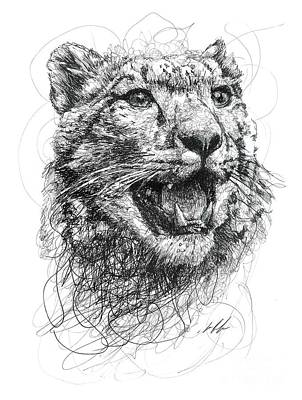 Animals Drawings - Leopard by Michael Volpicelli
