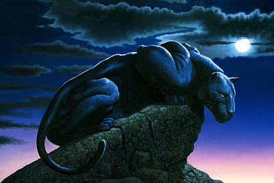 Panther On Rock Print by MGL Studio - Chris Hiett