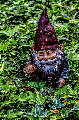 Photograph - Papa Gnome by Ken Frischkorn