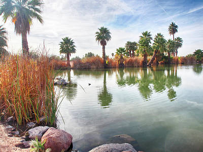Photograph - Papago Park Lake by C H Apperson