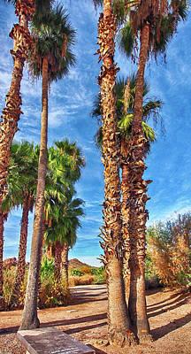 Photograph - Papago Park Palms by C H Apperson