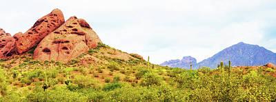 Phoenix Flowers Photograph - Papago Park Phoenix Arizona Horizontal Banner by Susan Schmitz