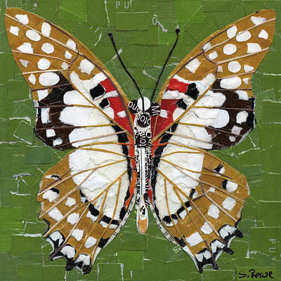 Mixed Media - Paper Butterfly - Angola White Lady by Shawna Rowe