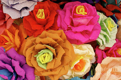 Photograph - Paper Flowers by John  Mitchell