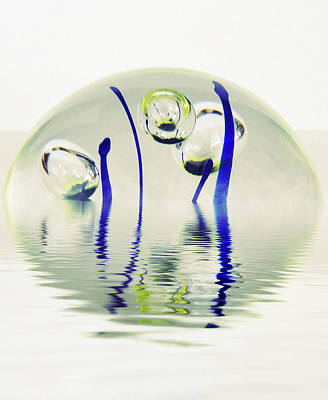 Photograph - Paperweight No. 12-1 by Sandy Taylor