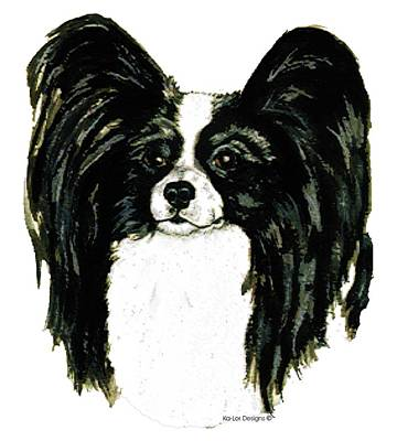 Christmas Gift Painting - Papillon by Kathleen Sepulveda