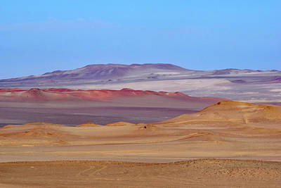 Photograph - Paracas National Reserve No. 3-1 by Sandy Taylor