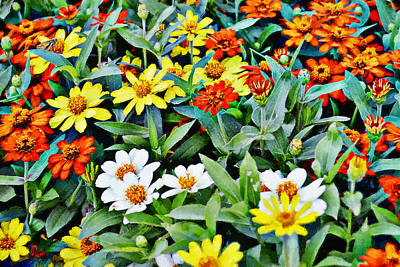Mixed Media - Parade Of Flowers One - Horizontal by Glenn McCarthy Art and Photography