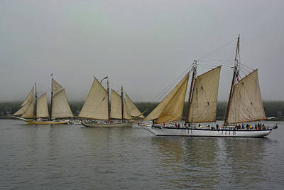 Photograph - Parade Of Sails by Jesse MacDonald