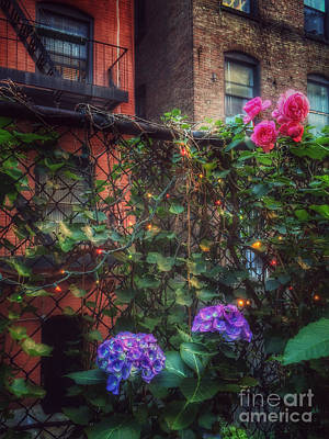 Photograph - Paradise By The Backyard Gate - City Garden by Miriam Danar