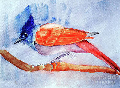 Flycatcher Painting - Paradise Flycatcher by Jasna Dragun