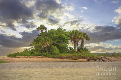 Photograph - Paradise Found by Dale Powell