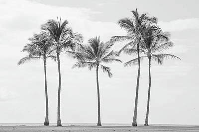 Paradise In Black And White II Art Print