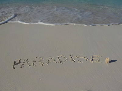 Photograph - Paradise by Jewels Blake Hamrick