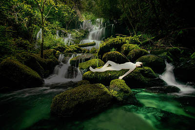Photograph - Paradise by Martin Visser