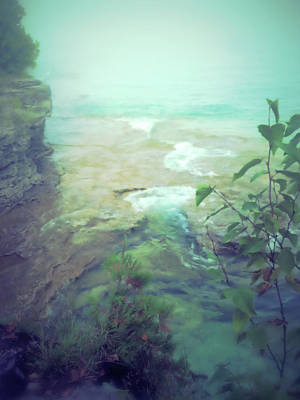 Photograph - Paradise by Mary Wolf