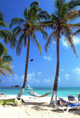 Photograph - Paradise On San Andres  by John Rizzuto