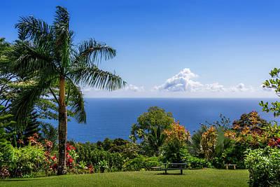 Photograph - Paradise Picnic by Daniel Murphy
