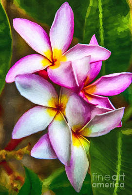 Garden Painting - Paradise Pink Plumeria by David Millenheft