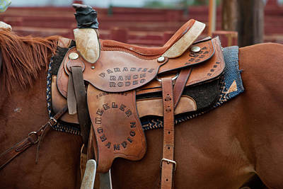 Photograph - Paradise Ranch Rodeo by Roger Mullenhour