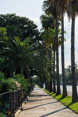 Photograph - Paradise Walk by Tikvah's Hope