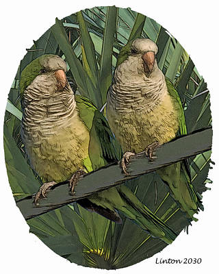Parakeet Digital Art - Parakeet Pair by Larry Linton
