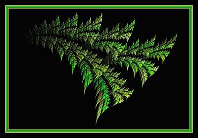 Digital Art - Parakeet Palmetto - Framed by Doug Morgan