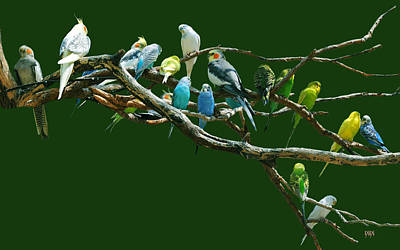 Parakeets N Cockatiels Art Print by DiDi Higginbotham