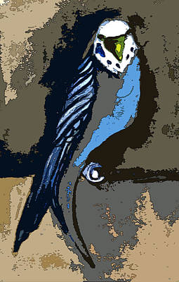 Parakeet Digital Art - Paraket Blue by Mindy Newman