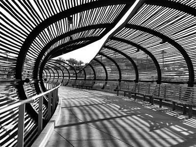 Photograph - Parallel Shadows by Kae Art