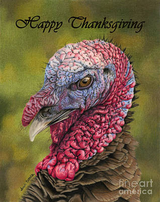 Turkey Drawing - Pardon Me?- Happy Thanksgiving Cards by Sarah Batalka