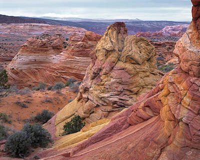 Layers Sculpturing Photograph - Paria Sandstone Textures by Leland D Howard
