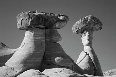 Photograph - Paria Utah Xiii Bw by David Gordon