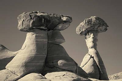 Photograph - Paria Utah Xiii Toned by David Gordon