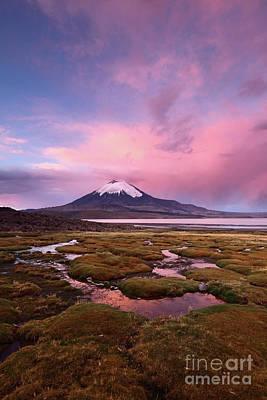 Photograph - Parinacota Volcano And Lago Chungara At Twilight by James Brunker