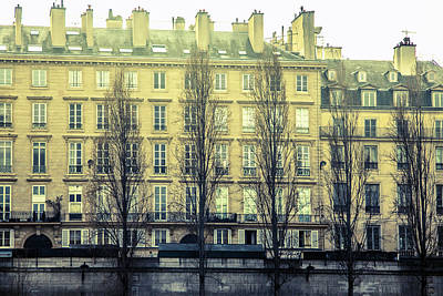 Bleached Tree Photograph - Parisian Architecture by Andrew Soundarajan