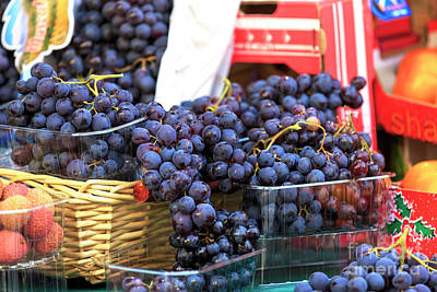 Photograph - Paris Grapes by John Rizzuto