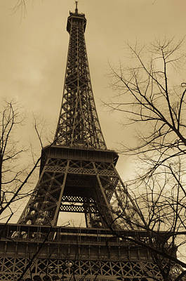 Photograph - Paris In April by Miguel Winterpacht