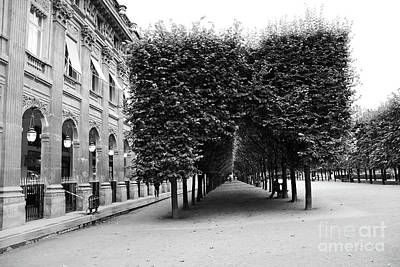 Photograph - Paris Palais Royal Gardens Row Of Trees - Palais Royal Architecture Trees Landscape by Kathy Fornal