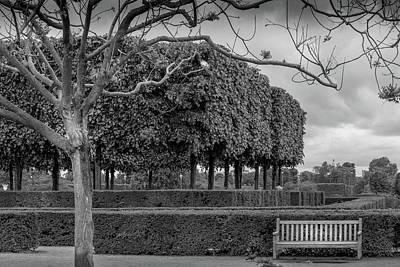 Paris Park In Early Spring Art Print