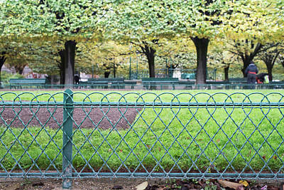 Photograph - Paris Park  by Jean Gill